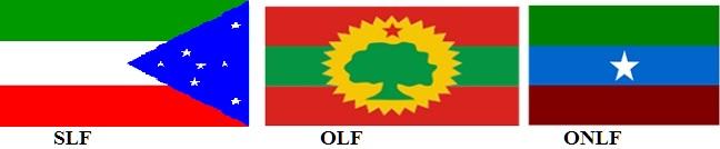 Sidama Liberation Front